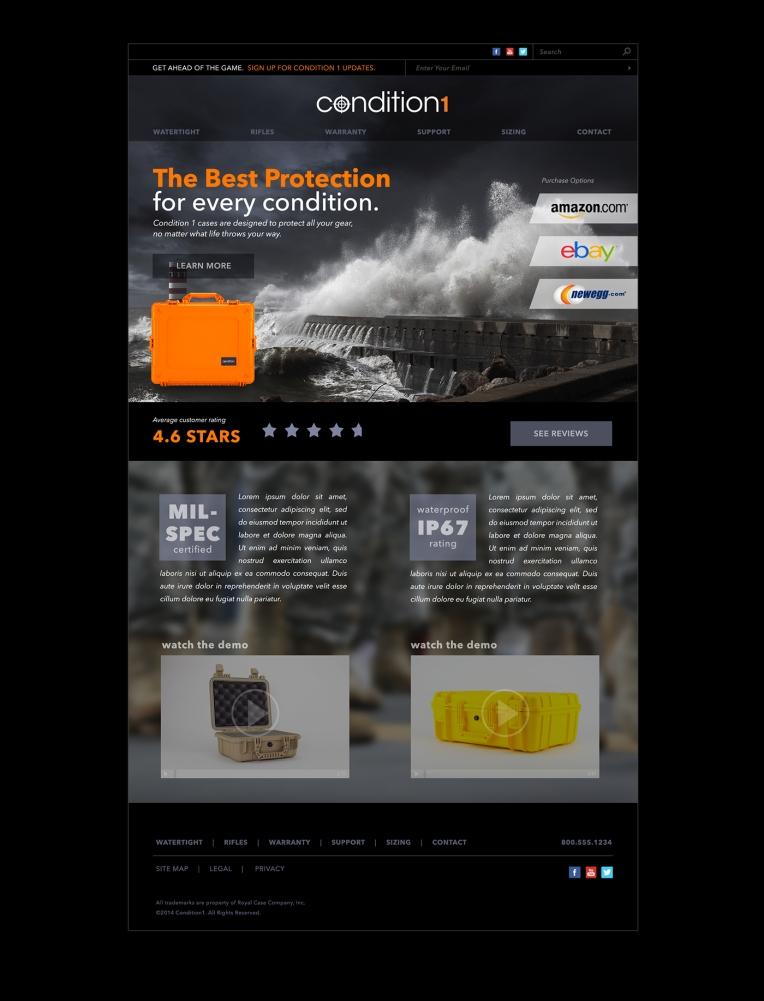 Condition 1 Webpage design